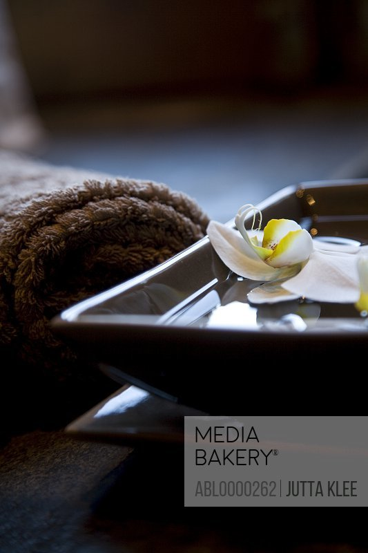 White flowers floating in square bowl with brown towels