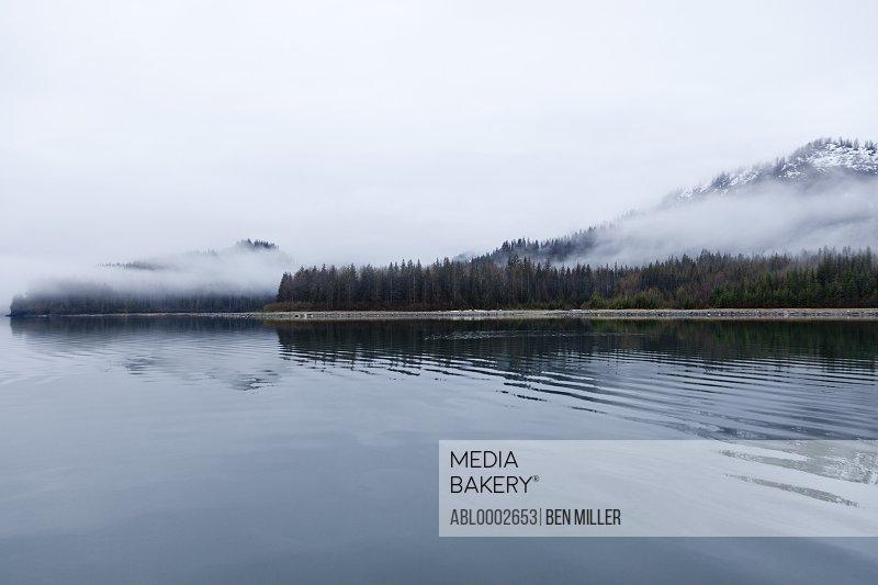 Shoreline Shrouded in Fog, Glacier Bay, Alaska, USA