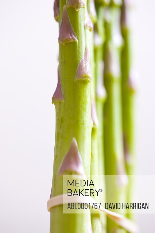 Extreme close up of asparagus stalks