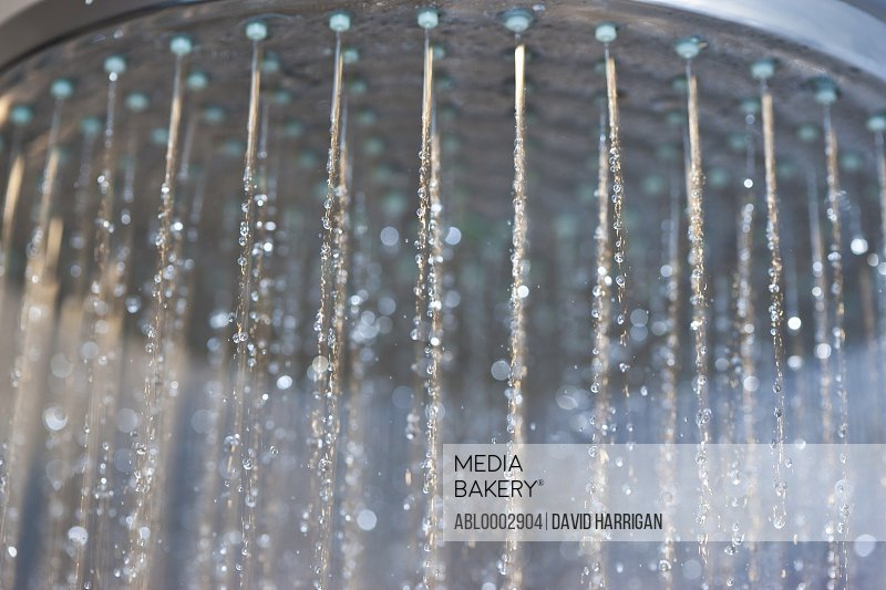 Water Running from Showerhead, Close-up view