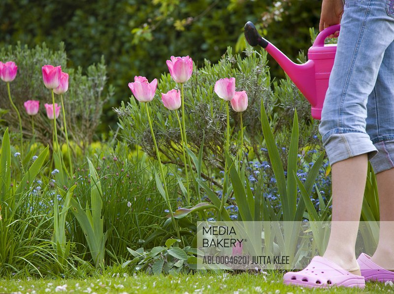 Legs of young girl in flower garden holding pink watering can
