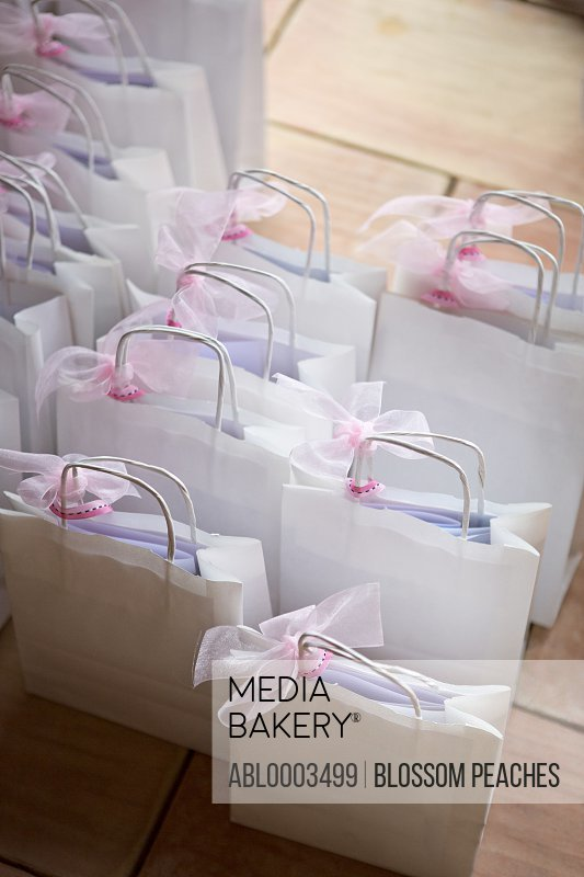 Gift Bags with Pink Ribbons at Wedding Ceremony