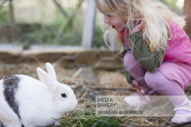 Little girl crouching and looking at a rabbit
