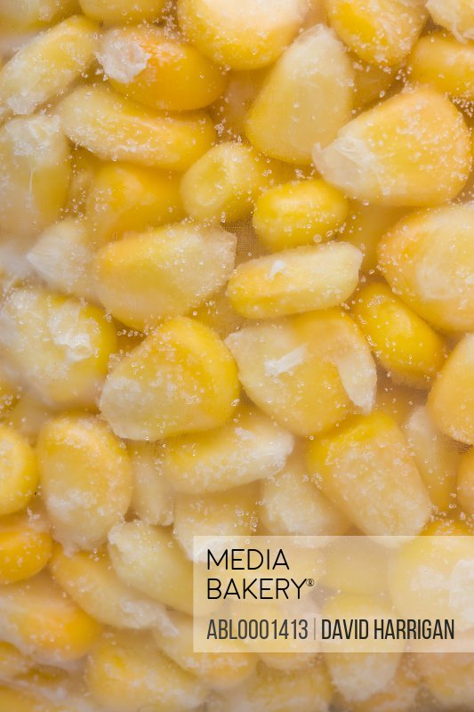 Extreme close up of a freezer bag filled with frozen sweet corn