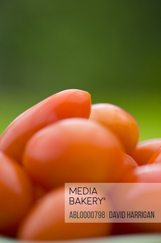 Little plum tomatoes