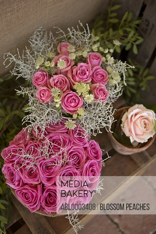 Vases with Pink Roses, Elevated View