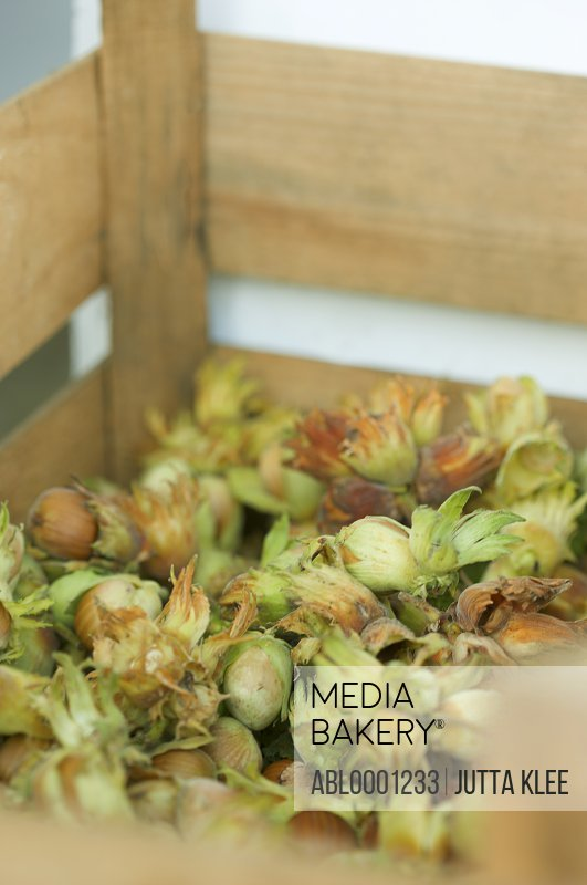 Close up of hazelnuts in a wooden crate