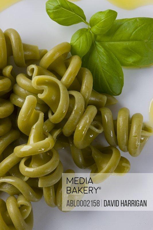Green Tortiglioni Pasta and Basil Leaves