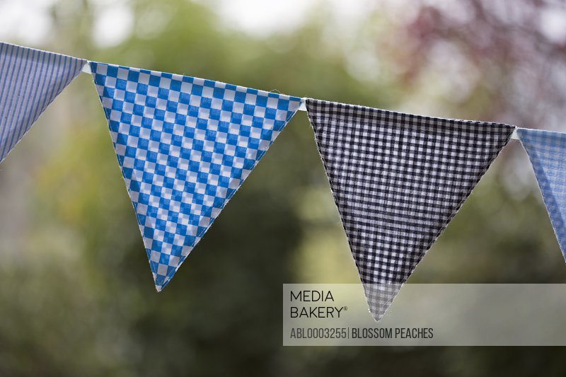 Gingham Bunting