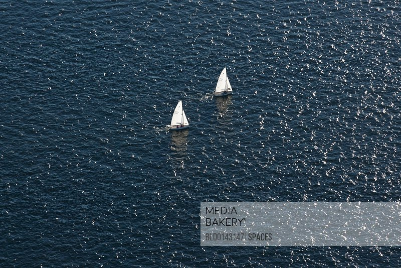 Sailboats in the Ocean