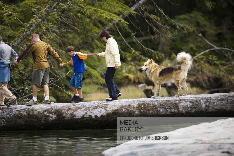 Family group walks across a log over a river.