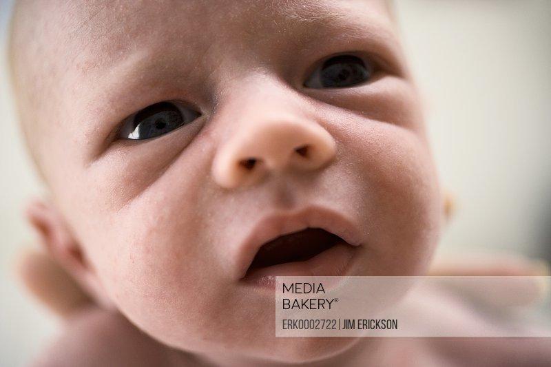 Portrait of a newborn baby.
