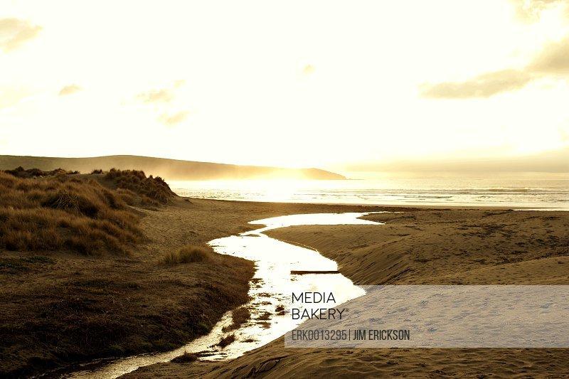Sepia toned beach landscape