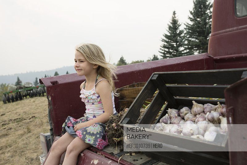 Carefree blonde girl sitting next to crate of harvested garlic in truck bed