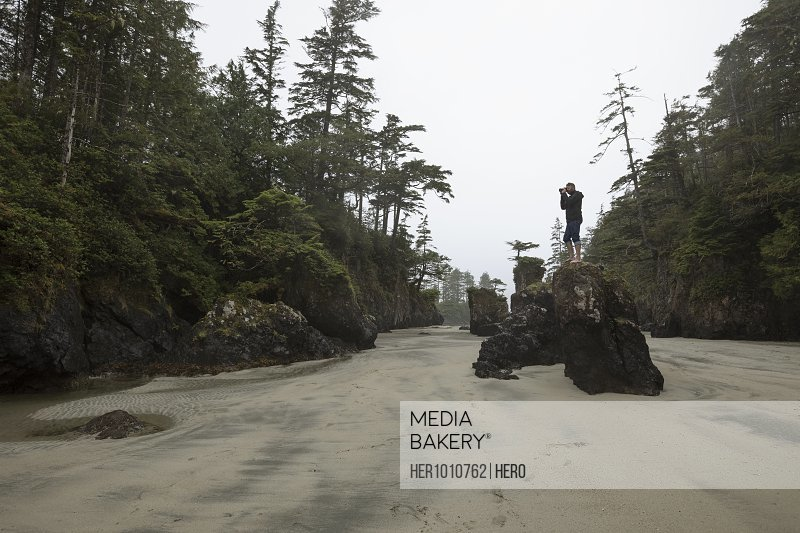 Male photographer on rock photographing trees on sandy wilderness beach
