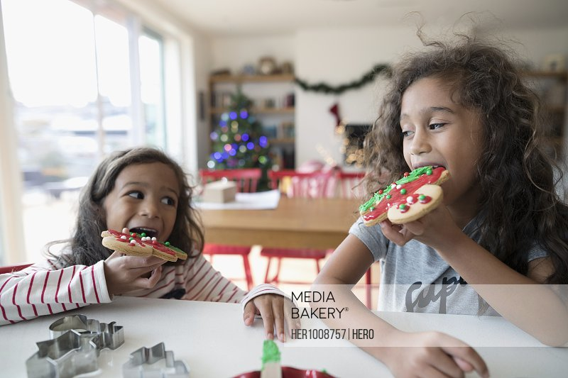 Girl sisters eating decorated Christmas gingerbread cookies in kitchen