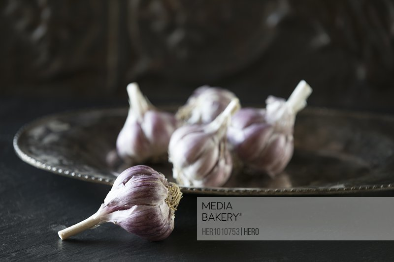Close up still life rustic purple garlic