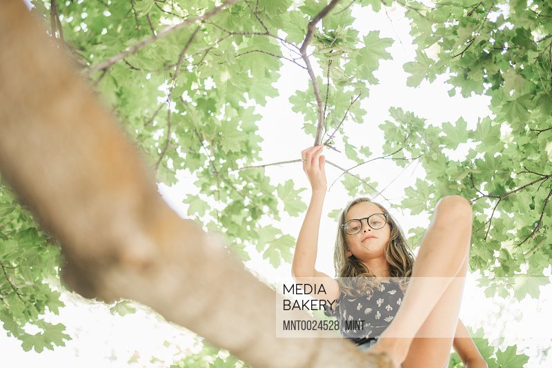 A young girl in shorts sitting on a high tree branch under a canopy of green leaves.