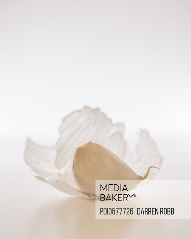 Garlic clove with delicate outer skin